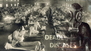 Deadly Diseases in History